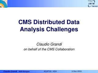 CMS Distributed Data Analysis Challenges