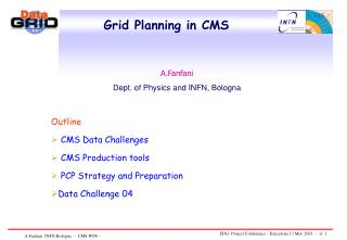 Grid Planning in CMS