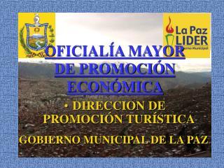 OFICIALÍA MAYOR DE PROMOCIÓN ECONÓMICA