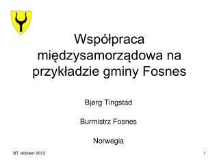 Współpraca międzysamorządowa na przykładzie gminy Fosnes