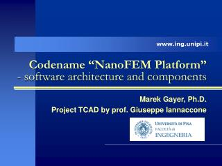 Codename �NanoFEM Platform�   - software architecture and components