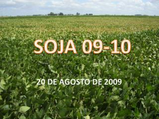 SOJA 09-10