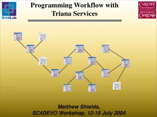 Programming Workflow with Triana Services