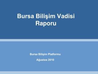 Bursa Bilişim Vadisi  Raporu
