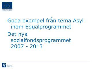 Goda exempel från tema Asyl inom Equalprogrammet Det nya socialfondsprogrammet 2007 - 2013