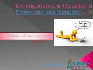 professional seo company