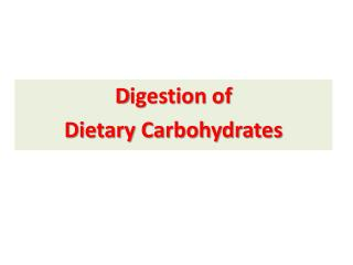 D igestion of  Dietary Carbohydrates