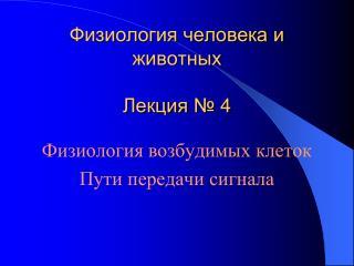 Физиология человека и животных Лекция № 4