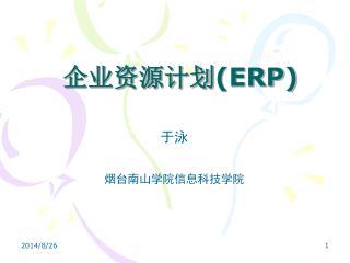 企业资源计划 (ERP)