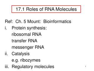 17 . 1 Roles of RNA Molecules