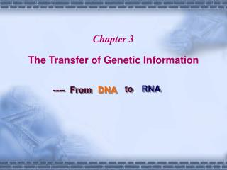 Chapter 3 The Transfer of Genetic Information