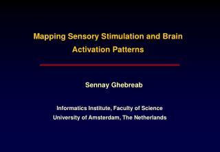 Mapping Sensory Stimulation and Brain Activation Patterns