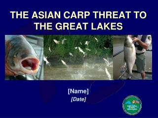 THE ASIAN CARP THREAT TO THE GREAT LAKES