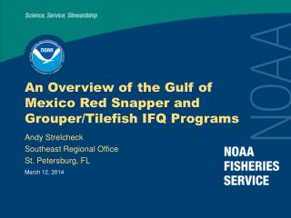 An Overview of the Gulf of Mexico Red Snapper and Grouper
