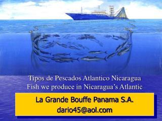 Tipos de Pescados Atlantico Nicaragua Fish we produce in Nicaragua s Atlantic