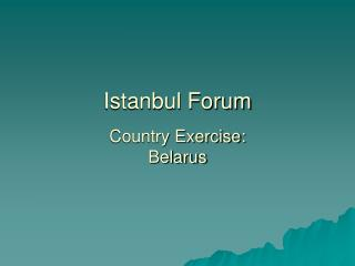 Istanbul Forum Country Exercise: Belarus