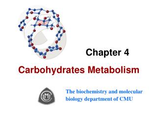 Chapter 4    Carbohydrates Metabolism