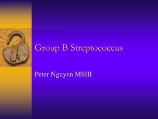 Group B Streptococcus