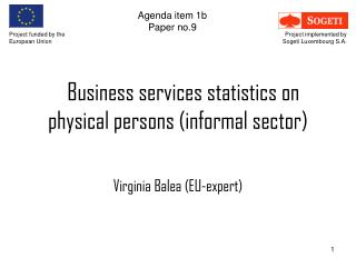 Business services statistics on physical persons (informal sector)
