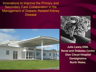 Julie Lewis DSN. Renal and Diabetes Centre Glan Clwyd Hospital  Denbighshire North Wales.