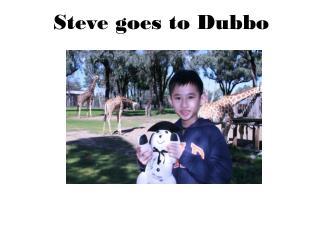 Steve goes to  Dubbo