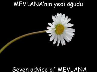 MEVLANA'nın yedi öğüdü