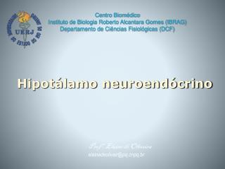 Hipotálamo neuroendócrino