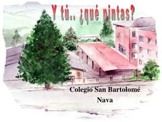 Colegio San Bartolomé  Nava