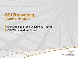 CSI Brownbag January 19, 2010