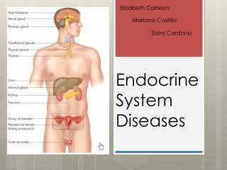 Endocrine System Diseases
