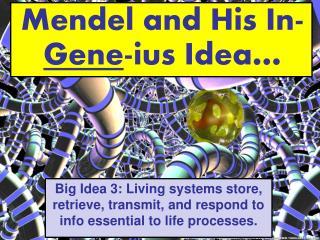 Mendel and His In- Gene -ius Idea…