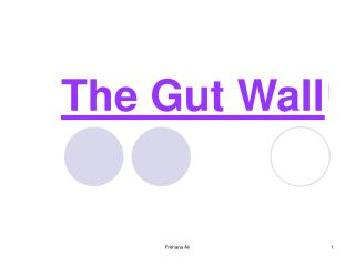The Gut Wall