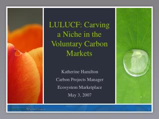LULUCF: Carving a Niche in the Voluntary Carbon Markets