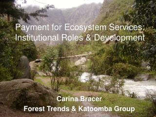 Payment for Ecosystem Services: Institutional Roles & Development