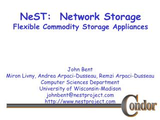 NeST:  Network Storage Flexible Commodity Storage Appliances