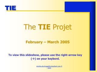 The  TIE  Projet  February – March 2005