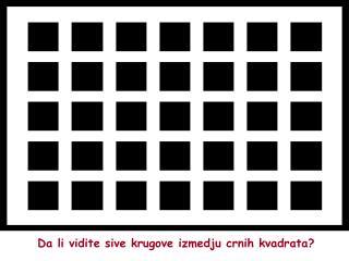 Da li vidite siv e krugove  izmedju crnih kvadrata?