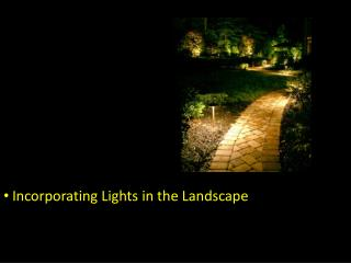 Incorporating Lights in the Landscape