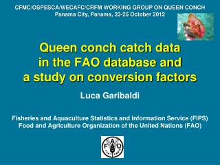 Queen conch catch data  in the FAO database and   a study on conversion factors