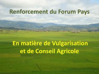 Renforcement du Forum  Pays En  matière  de Vulgarisation et de Conseil  A gricole