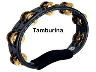 Tambur ína