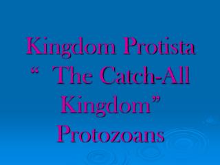 Kingdom Protista    The Catch-All Kingdom  Protozoans