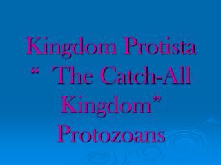 Kingdom Protista    The Catch-All Kingdom  Protozoans