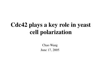 Cdc42 plays a key role in yeast cell polarization