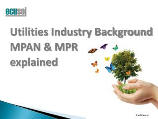 Utilities Industry Background MPAN & MPR  explained