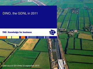 DINO, the GDNL in 2011
