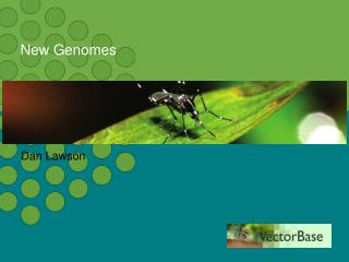 New Genomes