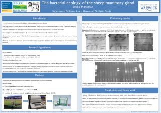 The bacterial ecology of the sheep  mammary gland