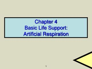 Chapter 4 Basic Life Support: Artificial Respiration