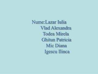Nume:Lazar Iulia            Vlad Alexandra            Todea Mirela             Ghitun Patricia